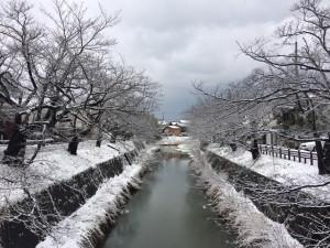 学園前の橋から