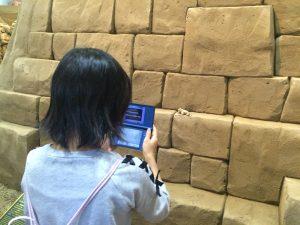 5月5日 SandMuseum にて 秘密のFrogを発見