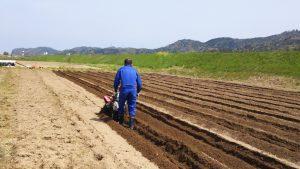 115㎝幅にビニールひもを目印に耕します。砂地のため足場が不安定です(約11列作成)